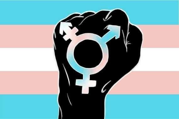 Trans Pride Pic